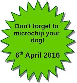 Microchip your dog